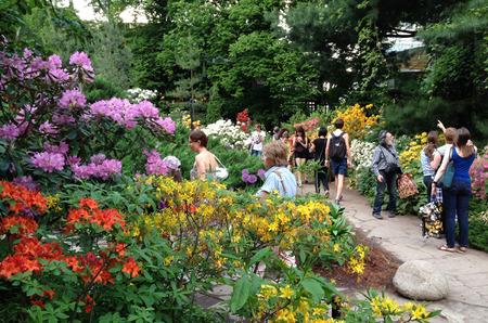 Арт-маршрут: XVII Весенний фестиваль цветов в Аптекарском огороде