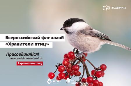 """Стартовал всероссийский флешмоб """"Хранители птиц"""""""
