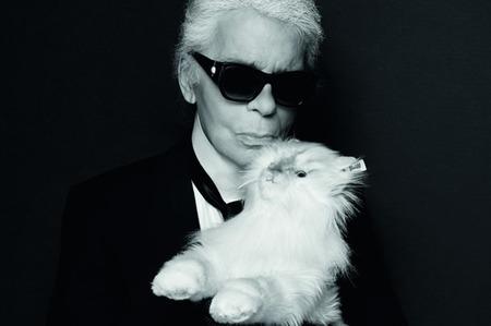 Карл Лагерфельд продает чучело своей кошки