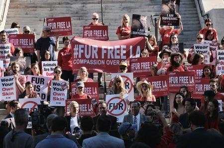 В Лос-Анджелесе запретили продажу меха